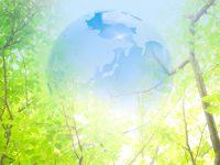 地球と森林